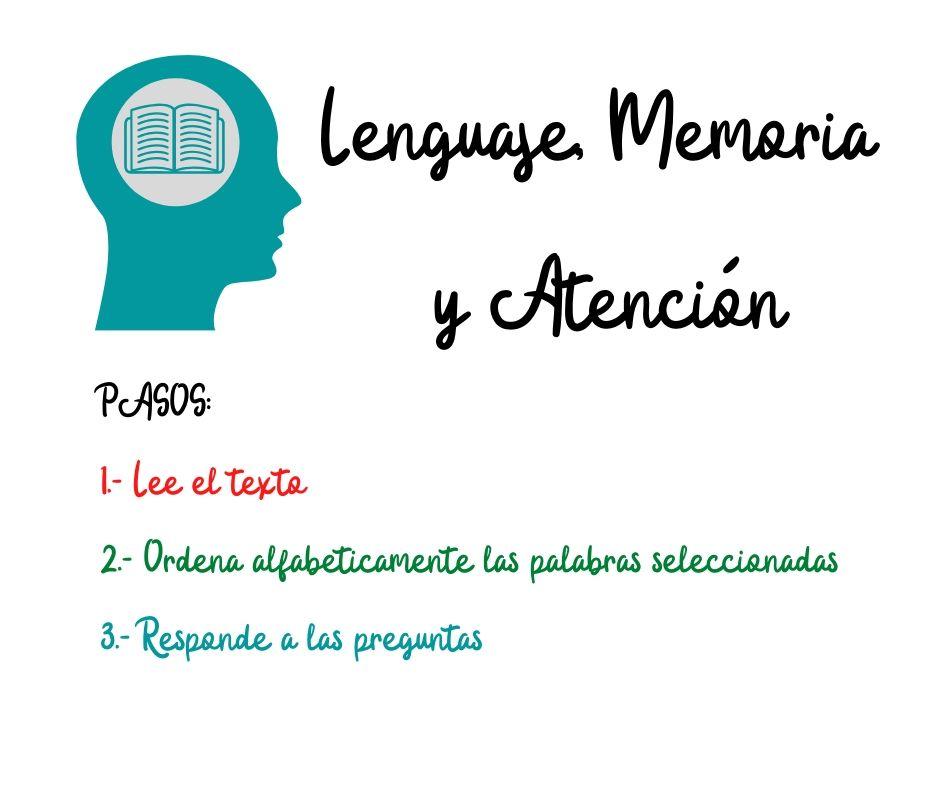 Lenguaje Memoria Y Atencion 1